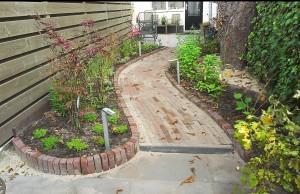 lange smalle tuin met kastanje : beplanting zetten