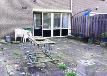 Oude, versteende tuin